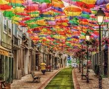 Шүхэртэй, цэцэгтэй, дэнлүүтэй дэлхийн хамгийн үзэсгэлэнтэй гудамжууд