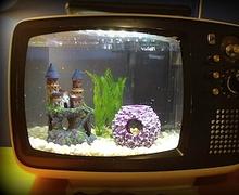Хуучин телевизээр аквариум хийгээрэй