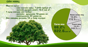 Мод модон материалын импортын зах зээлийн судалгаа