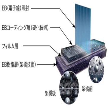 EB хуулга - Өндөр үзүүлэлттэй ханын обой RE51677