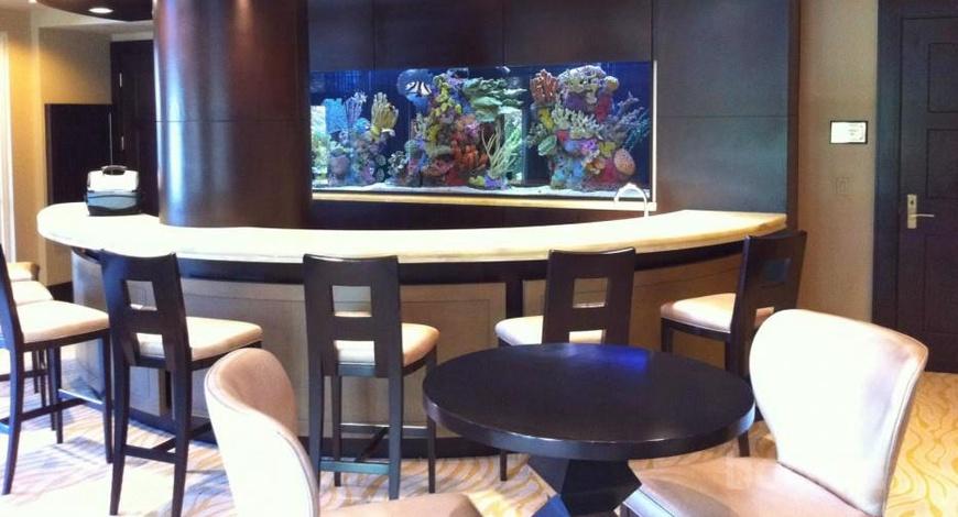Загас тэжээх дуртай хүмүүс гэртээ аквариумаа хэрхэн байрлуулах вэ
