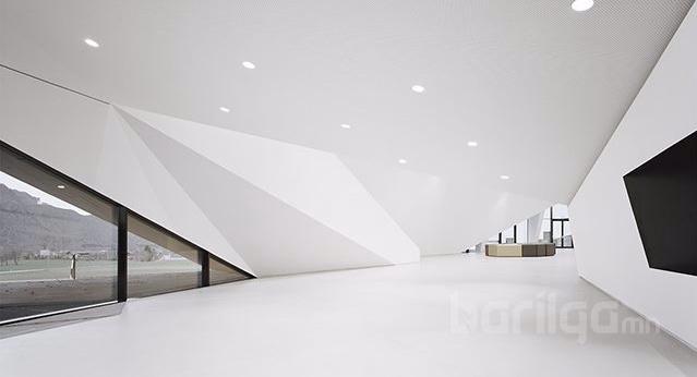 Хар цагаан өнгөний хослолт Австри дахь концертын танхим